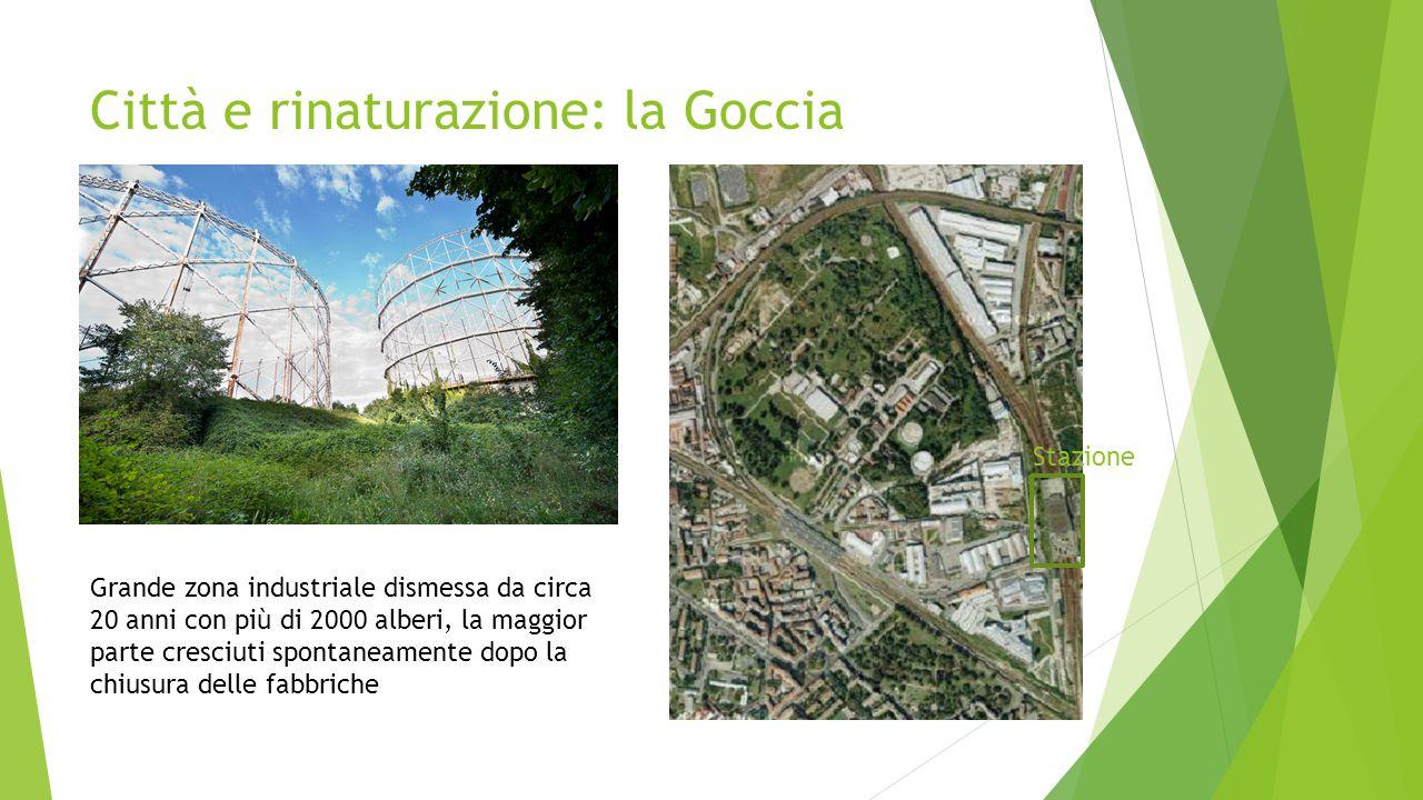 Città e rinaturazione: la Goccia Grande zona industriale dismessa da circa 20 anni con più di 2000 alberi, la maggior parte cresciuti spontaneamente dopo la chiusura delle fabbriche Stazione
