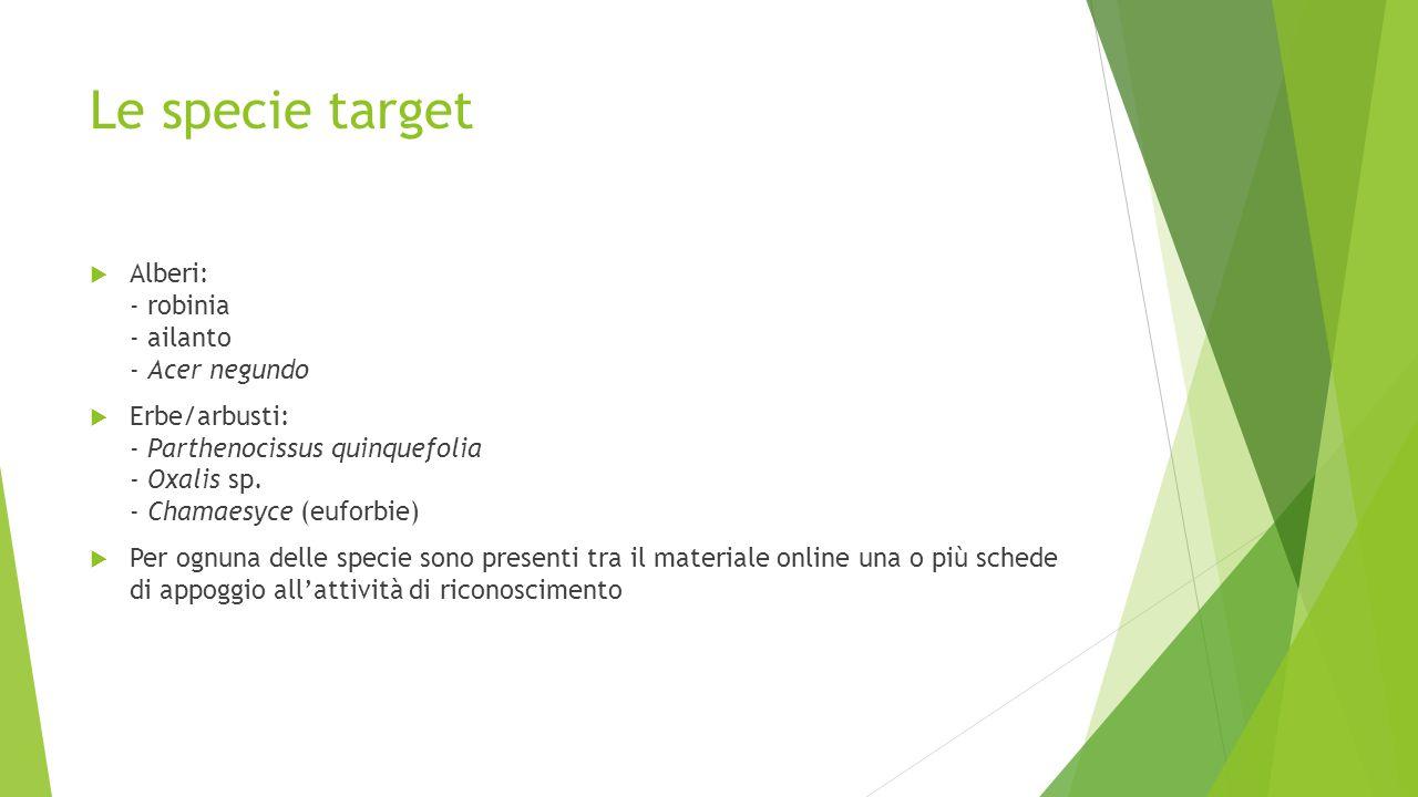 Le specie target  Alberi: - robinia - ailanto - Acer negundo  Erbe/arbusti: - Parthenocissus quinquefolia - Oxalis sp. - Chamaesyce (euforbie)  Per