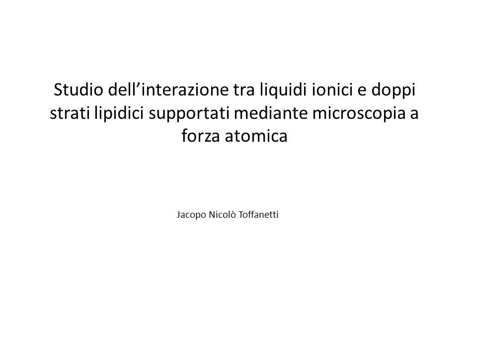 Studio dell'interazione tra liquidi ionici e doppi strati lipidici supportati mediante microscopia a forza atomica Jacopo Nicolò Toffanetti