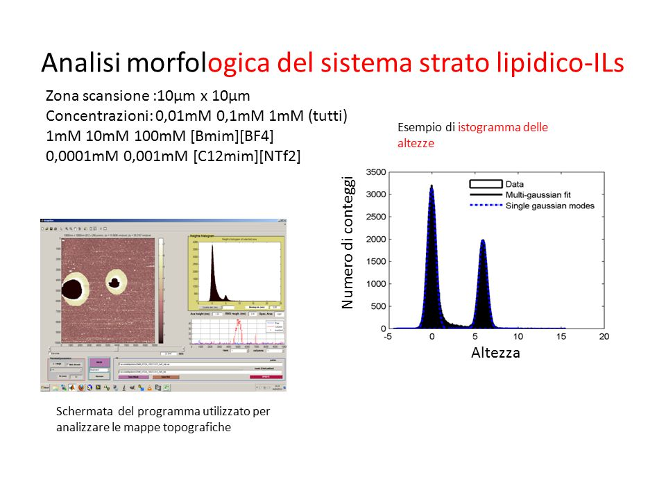 Analisi morfologica del sistema strato lipidico-ILs Schermata del programma utilizzato per analizzare le mappe topografiche Esempio di istogramma dell