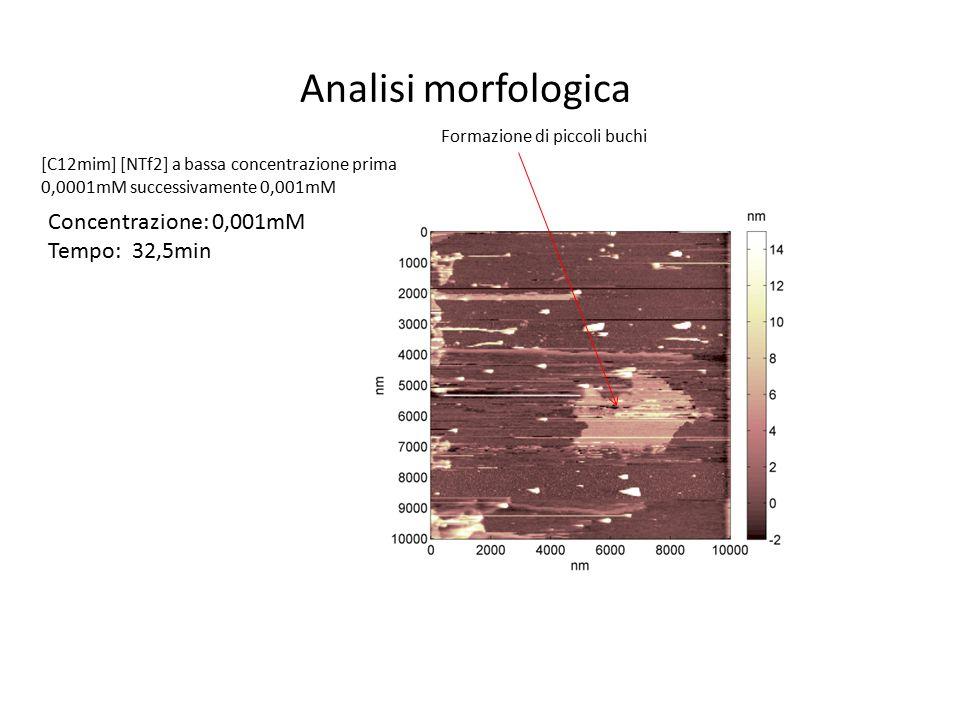 [C12mim] [NTf2] a bassa concentrazione prima 0,0001mM successivamente 0,001mM Concentrazione: 0,001mM Tempo: 32,5min Formazione di piccoli buchi Anali