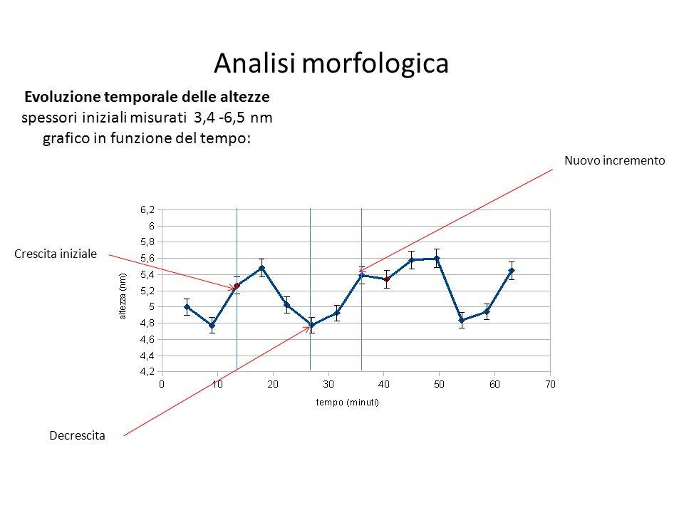 Evoluzione temporale delle altezze spessori iniziali misurati 3,4 -6,5 nm grafico in funzione del tempo: Crescita iniziale Decrescita Nuovo incremento