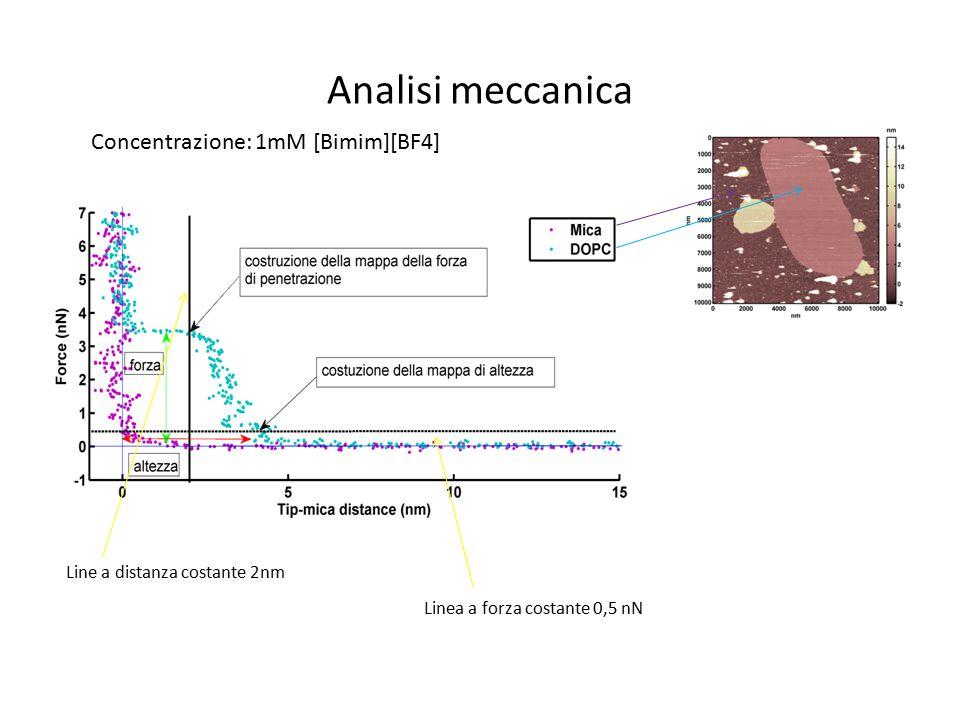 Analisi meccanica Line a distanza costante 2nm Linea a forza costante 0,5 nN Concentrazione: 1mM [Bimim][BF4]