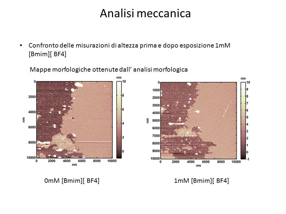 Analisi meccanica Confronto delle misurazioni di altezza prima e dopo esposizione 1mM [Bmim][ BF4] 0mM [Bmim][ BF4]1mM [Bmim][ BF4] Mappe morfologiche