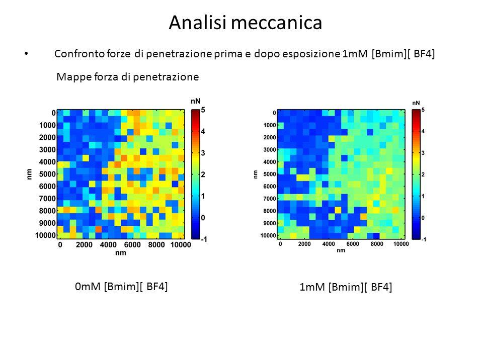 Confronto forze di penetrazione prima e dopo esposizione 1mM [Bmim][ BF4] 0mM [Bmim][ BF4] 1mM [Bmim][ BF4] Mappe forza di penetrazione Analisi meccan