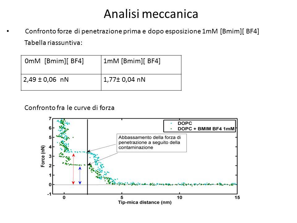Confronto forze di penetrazione prima e dopo esposizione 1mM [Bmim][ BF4] 0mM [Bmim][ BF4]1mM [Bmim][ BF4] 2,49 ± 0,06 nN1,77± 0,04 nN Tabella riassun