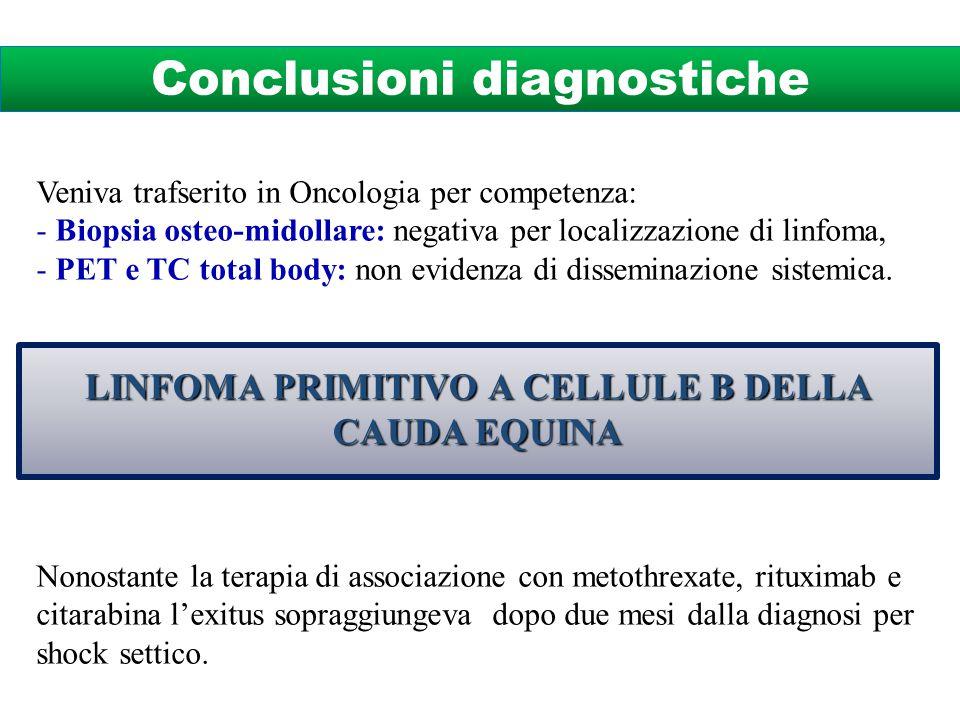 Veniva trafserito in Oncologia per competenza: - Biopsia osteo-midollare: negativa per localizzazione di linfoma, - PET e TC total body: non evidenza di disseminazione sistemica.