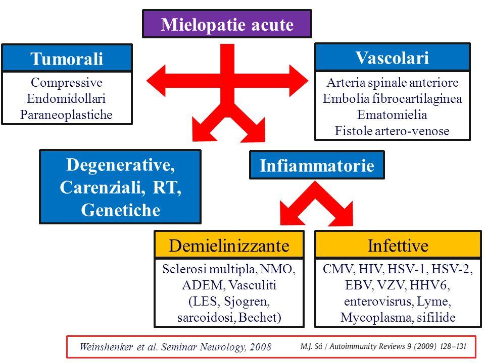 Mielopatie acute Tumorali Vascolari Infiammatorie DemielinizzanteInfettive Sclerosi multipla, NMO, ADEM, Vasculiti (LES, Sjogren, sarcoidosi, Bechet) CMV, HIV, HSV-1, HSV-2, EBV, VZV, HHV6, enterovisrus, Lyme, Mycoplasma, sifilide Compressive Endomidollari Paraneoplastiche Weinshenker et al.