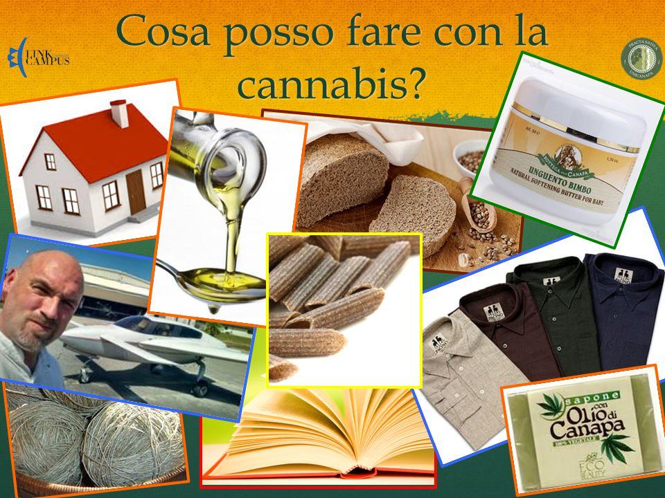 Cosa posso fare con la cannabis