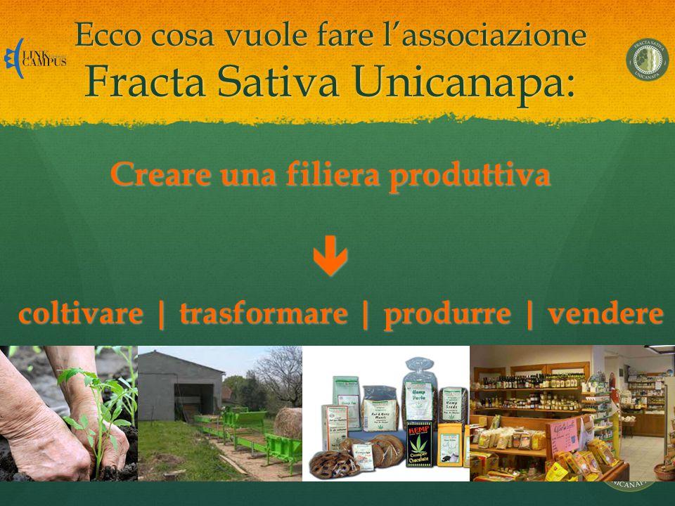 Ecco cosa vuole fare l'associazione Fracta Sativa Unicanapa: coltivare | trasformare | produrre | vendere Creare una filiera produttiva 