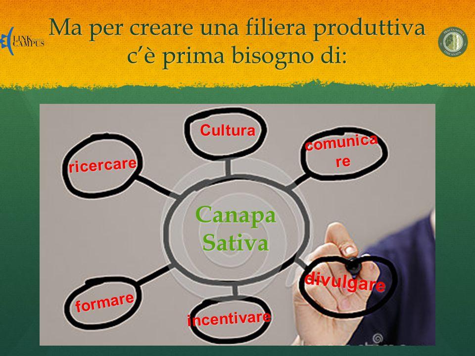 Ma per creare una filiera produttiva c'è prima bisogno di: CanapaSativa incentivare formare ricercare Cultura comunica re divulgare