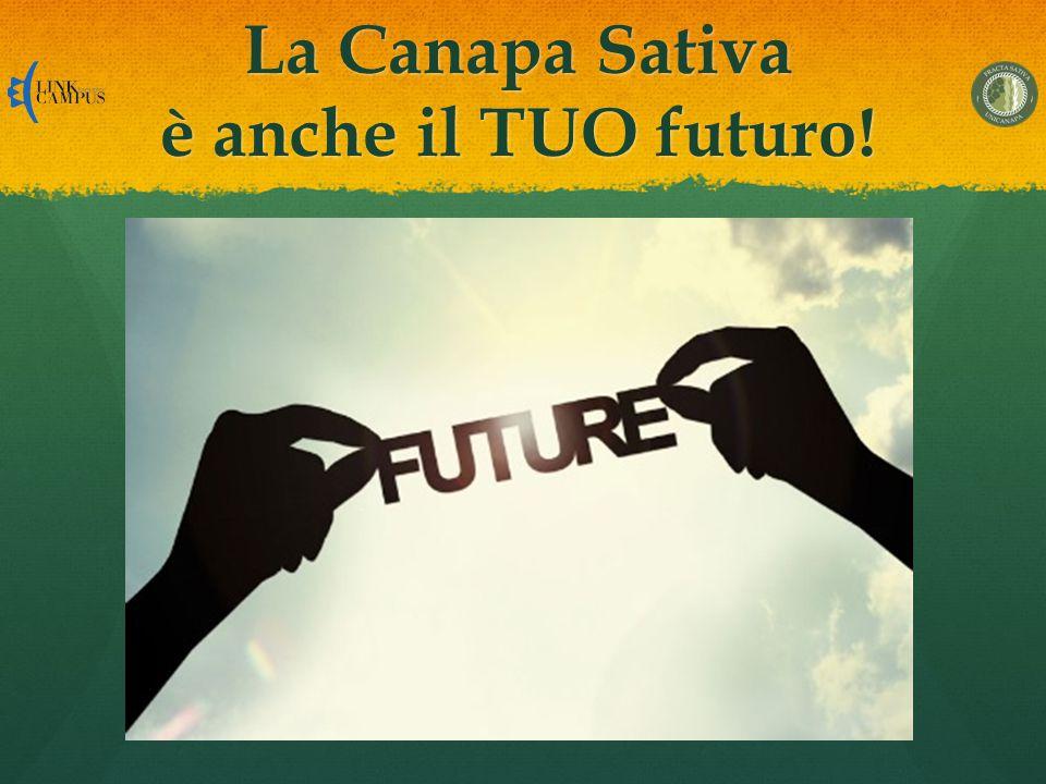 La Canapa Sativa è anche il TUO futuro!