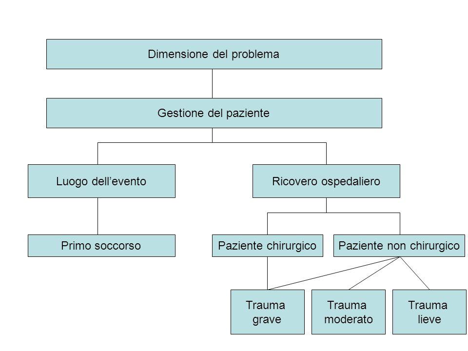 Dimensione del problema Gestione del paziente Luogo dell'eventoRicovero ospedaliero Primo soccorsoPaziente chirurgicoPaziente non chirurgico Trauma gr