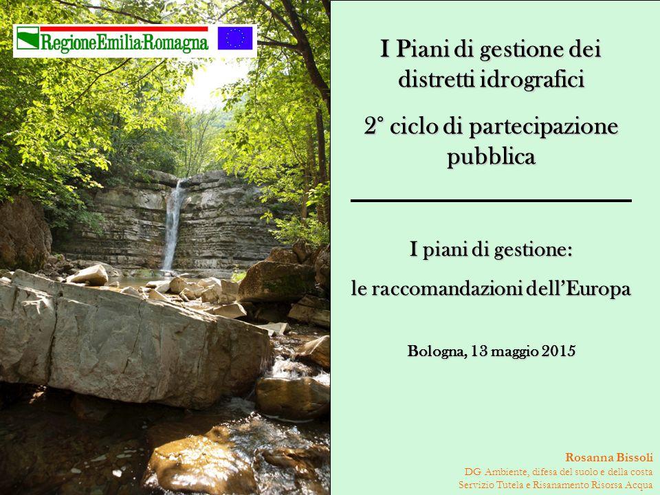 Rosanna Bissoli DG Ambiente, difesa del suolo e della costa Servizio Tutela e Risanamento Risorsa Acqua I piani di gestione: le raccomandazioni dell'E