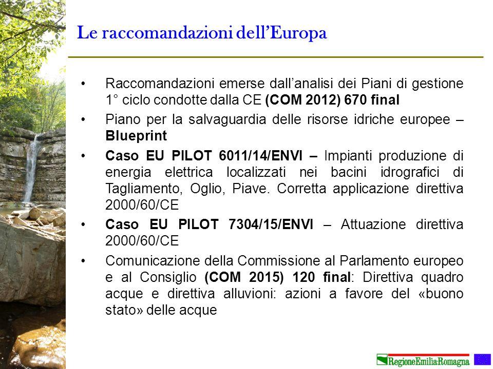 Le raccomandazioni dell'Europa Raccomandazioni emerse dall'analisi dei Piani di gestione 1° ciclo condotte dalla CE (COM 2012) 670 final Piano per la