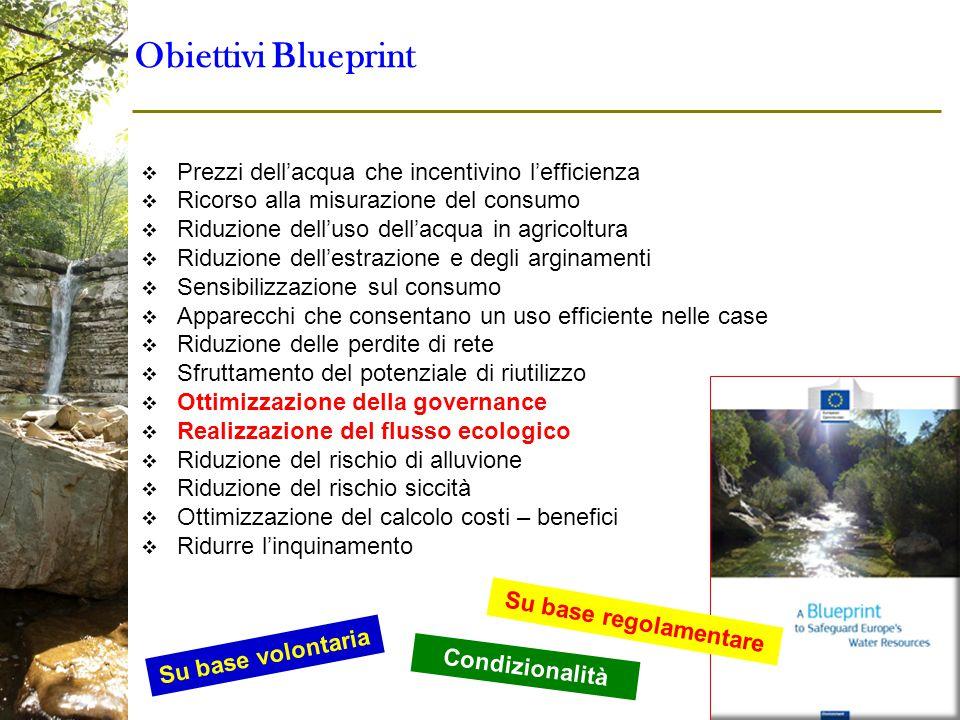  Prezzi dell'acqua che incentivino l'efficienza  Ricorso alla misurazione del consumo  Riduzione dell'uso dell'acqua in agricoltura  Riduzione del