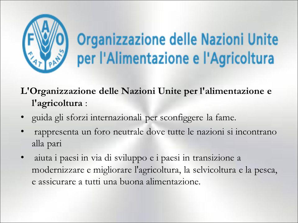 L'Organizzazione delle Nazioni Unite per l'alimentazione e l'agricoltura : guida gli sforzi internazionali per sconfiggere la fame. rappresenta un for