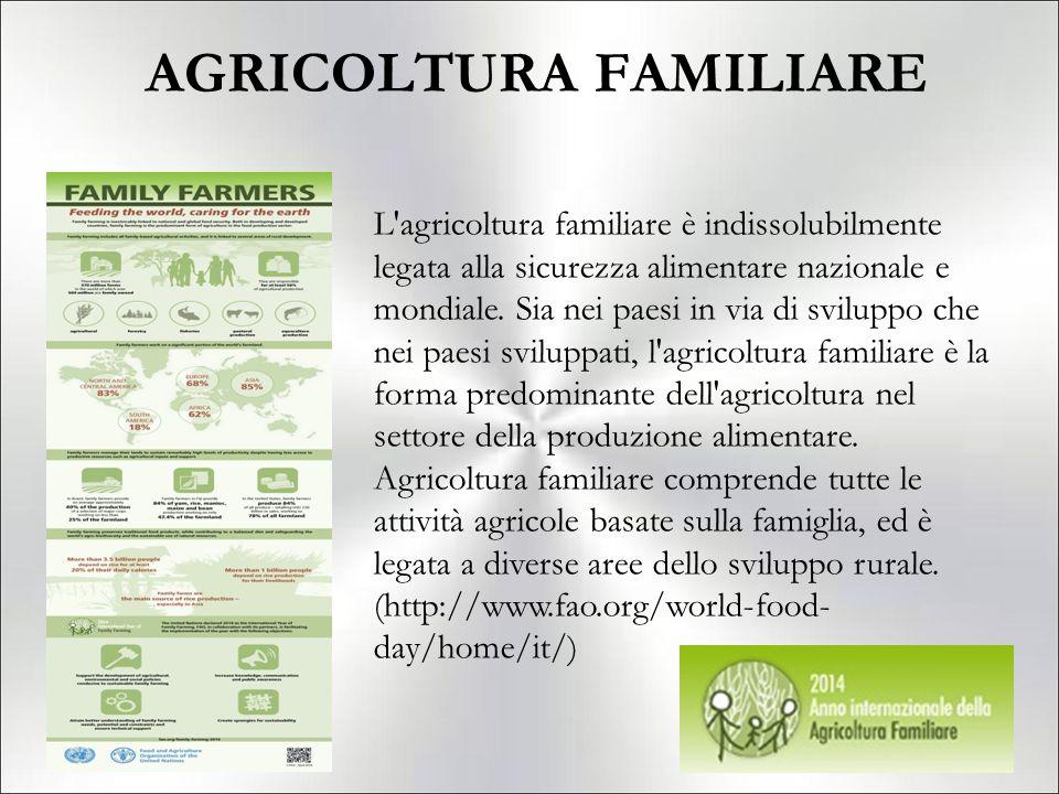 AGRICOLTURA FAMILIARE L'agricoltura familiare è indissolubilmente legata alla sicurezza alimentare nazionale e mondiale. Sia nei paesi in via di svilu