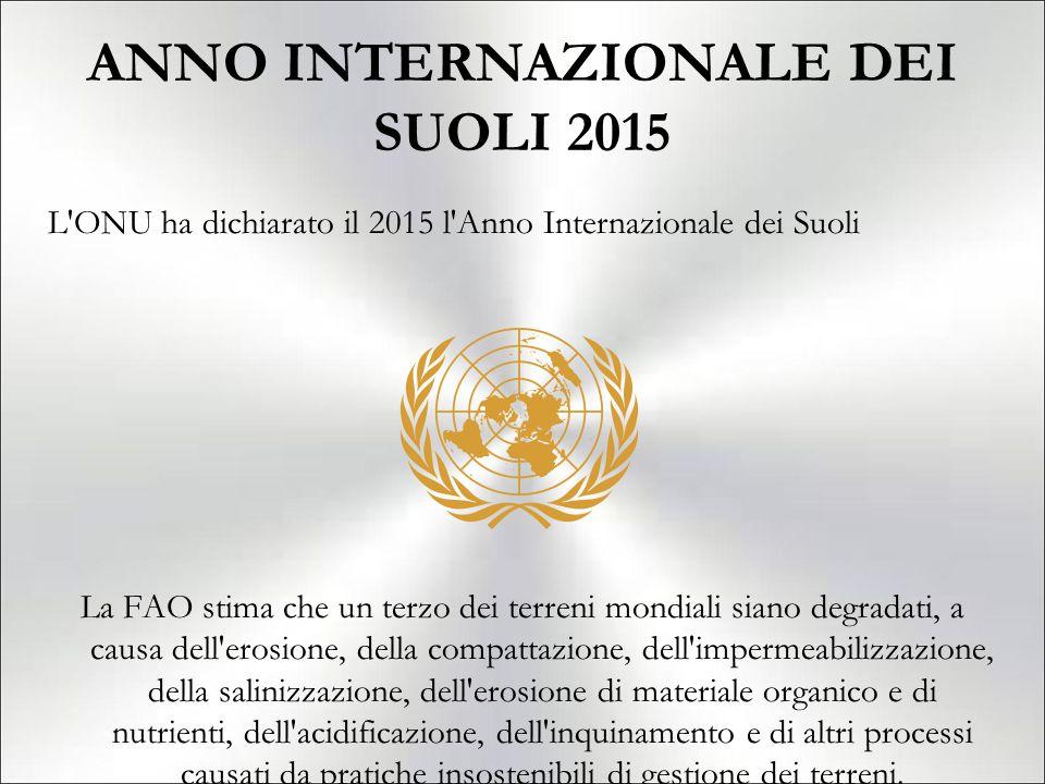 ANNO INTERNAZIONALE DEI SUOLI 2015 L'ONU ha dichiarato il 2015 l'Anno Internazionale dei Suoli La FAO stima che un terzo dei terreni mondiali siano de
