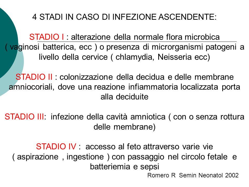 4 STADI IN CASO DI INFEZIONE ASCENDENTE: STADIO I : alterazione della normale flora microbica ( vaginosi batterica, ecc ) o presenza di microrganismi