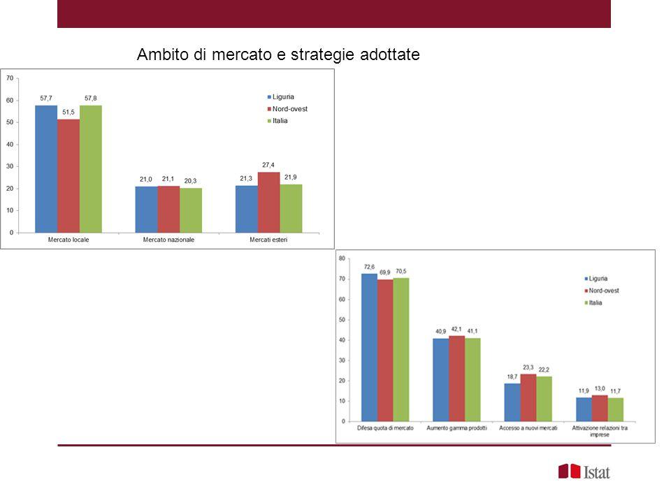 Ambito di mercato e strategie adottate