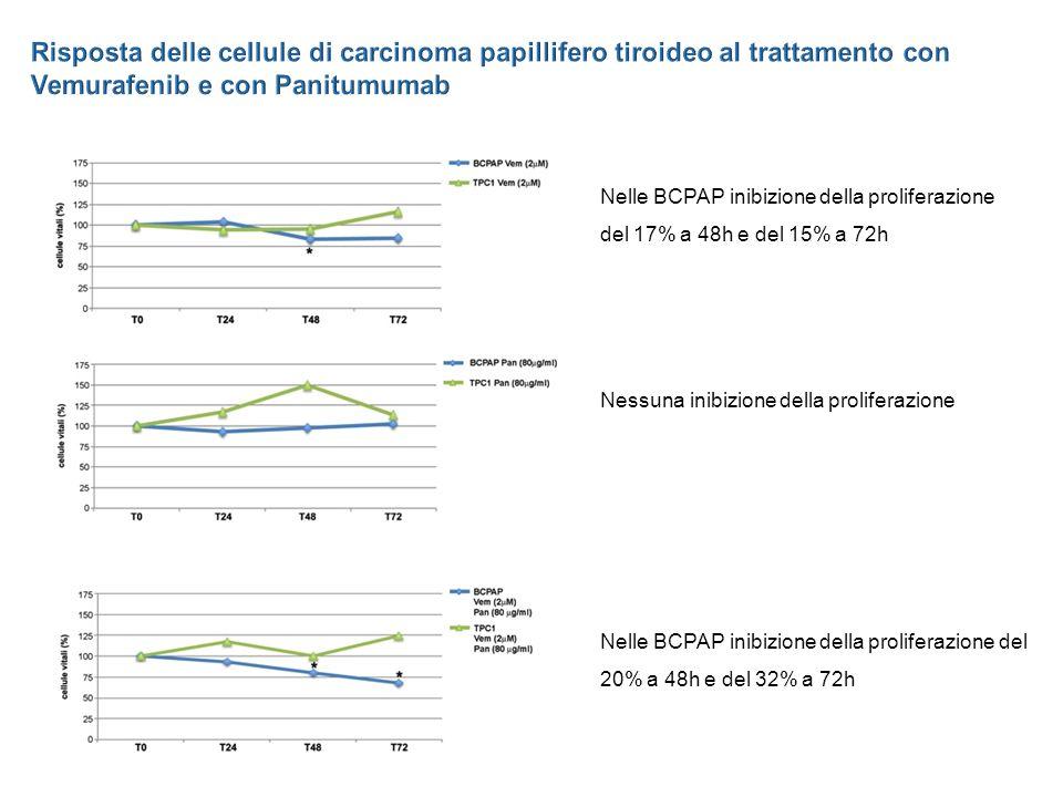 Nelle BCPAP inibizione della proliferazione del 17% a 48h e del 15% a 72h Nessuna inibizione della proliferazione Nelle BCPAP inibizione della proliferazione del 20% a 48h e del 32% a 72h