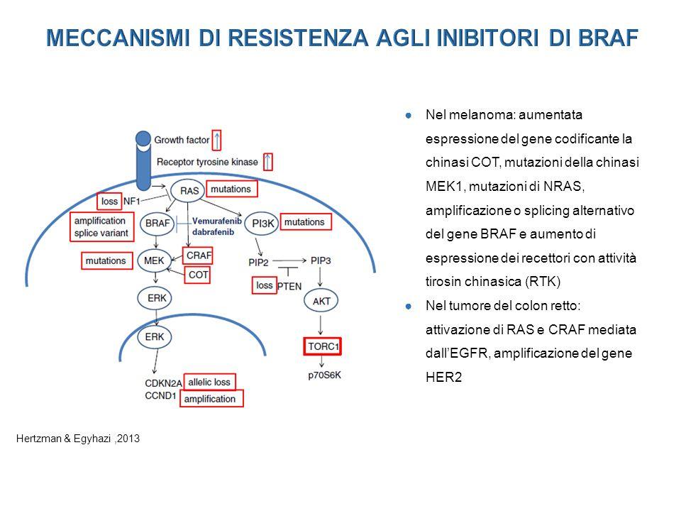 ●Nel melanoma: aumentata espressione del gene codificante la chinasi COT, mutazioni della chinasi MEK1, mutazioni di NRAS, amplificazione o splicing alternativo del gene BRAF e aumento di espressione dei recettori con attività tirosin chinasica (RTK) ●Nel tumore del colon retto: attivazione di RAS e CRAF mediata dall'EGFR, amplificazione del gene HER2 Hertzman & Egyhazi,2013
