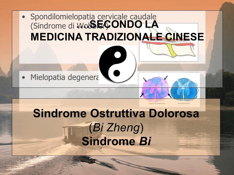 SINDROME BI Sindrome Bi da Vento (o migrante) Sindrome Bi da Umidità (o fissa) Sindrome Bi da Freddo (o dolorosa) Sindrome Bi da Calore Sindrome Bi delle Ossa INVASIONE DI VENTO, FREDDO, UMIDITA' DEBOLEZZA WEI QI STASI DI QI E XUE DOLORE RIGIDITA' INTORPIDIMENTO GONFIORE
