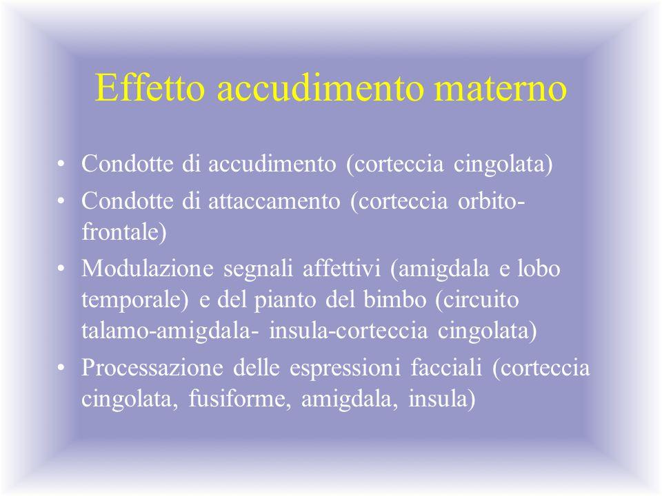 Effetto accudimento materno Condotte di accudimento (corteccia cingolata) Condotte di attaccamento (corteccia orbito- frontale) Modulazione segnali af