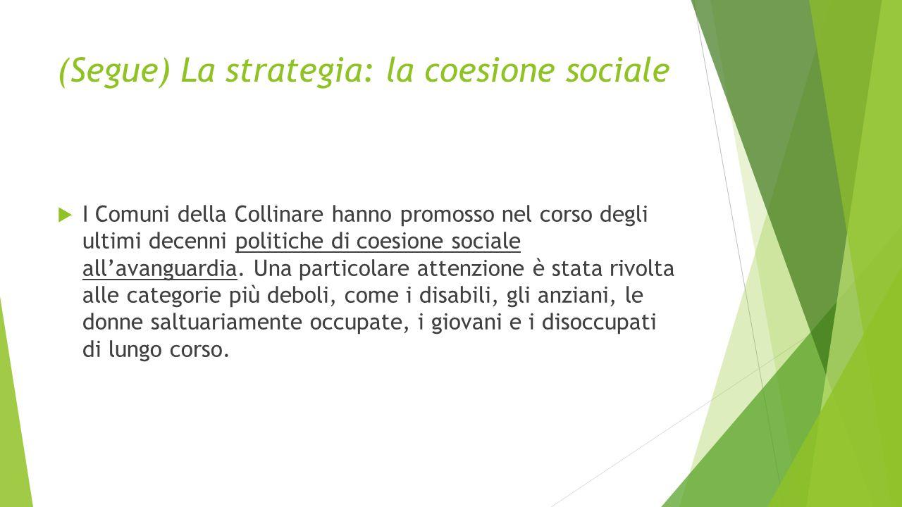 (Segue) La strategia: la coesione sociale  I Comuni della Collinare hanno promosso nel corso degli ultimi decenni politiche di coesione sociale all'a