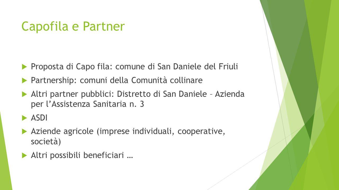 Capofila e Partner  Proposta di Capo fila: comune di San Daniele del Friuli  Partnership: comuni della Comunità collinare  Altri partner pubblici: Distretto di San Daniele – Azienda per l'Assistenza Sanitaria n.
