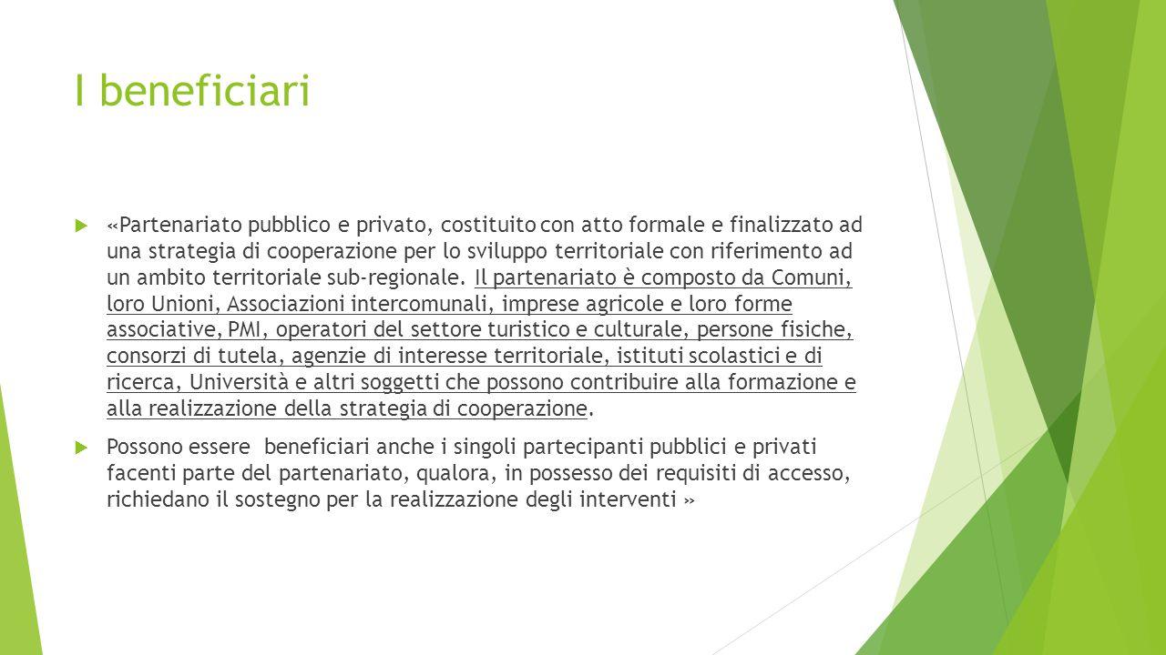 I beneficiari  «Partenariato pubblico e privato, costituito con atto formale e finalizzato ad una strategia di cooperazione per lo sviluppo territoriale con riferimento ad un ambito territoriale sub-regionale.