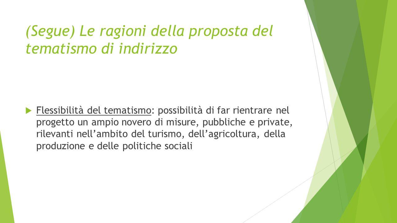 (Segue) Le ragioni della proposta del tematismo di indirizzo  Flessibilità del tematismo: possibilità di far rientrare nel progetto un ampio novero di misure, pubbliche e private, rilevanti nell'ambito del turismo, dell'agricoltura, della produzione e delle politiche sociali