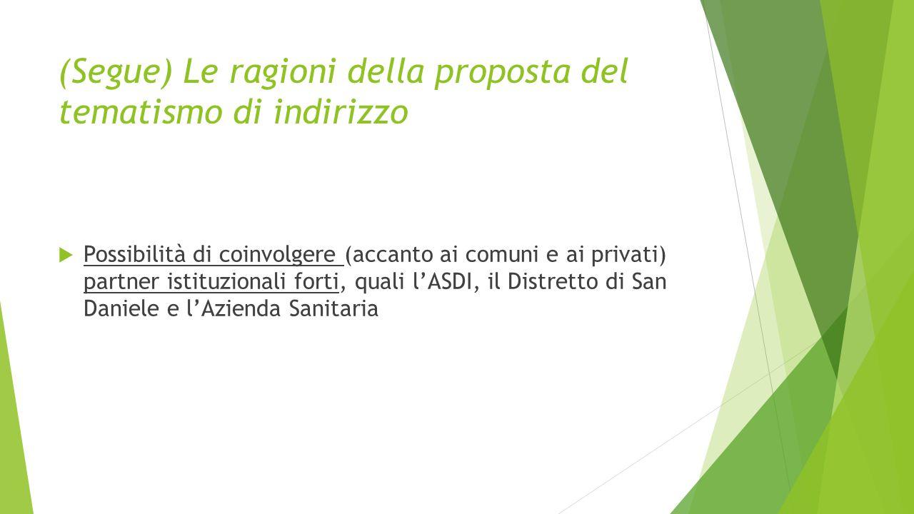 (Segue) Le ragioni della proposta del tematismo di indirizzo  Possibilità di coinvolgere (accanto ai comuni e ai privati) partner istituzionali forti, quali l'ASDI, il Distretto di San Daniele e l'Azienda Sanitaria