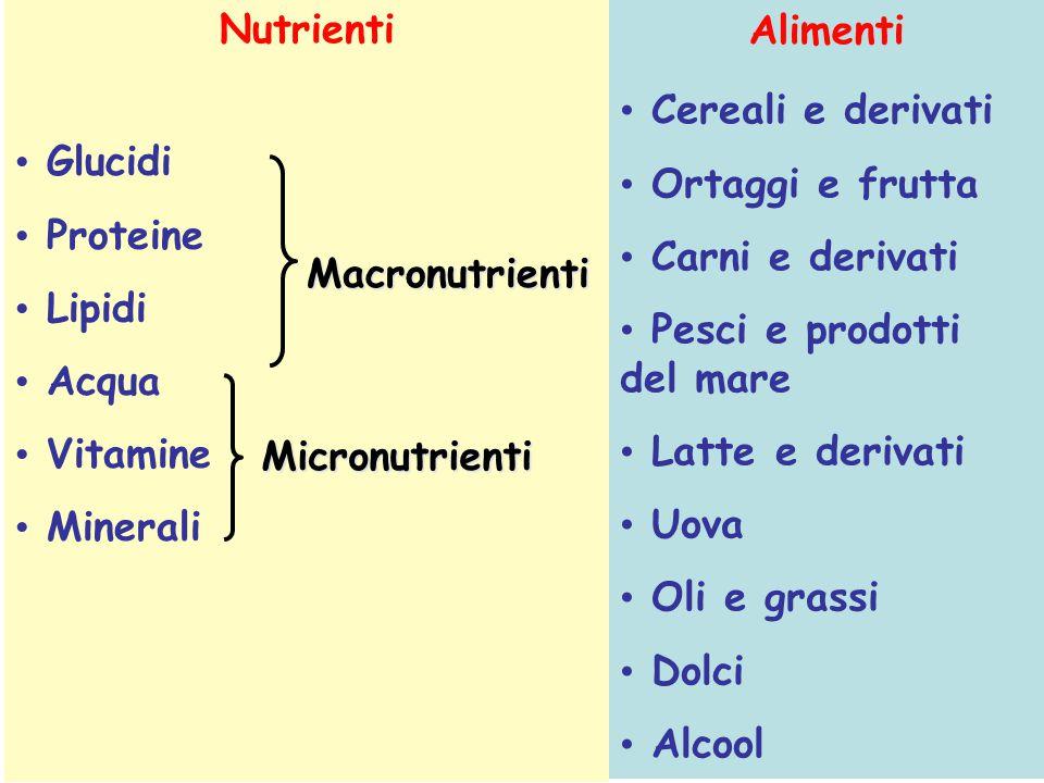 Nutrienti Glucidi Proteine Lipidi Acqua Vitamine Minerali Alimenti Cereali e derivati Ortaggi e frutta Carni e derivati Pesci e prodotti del mare Latt
