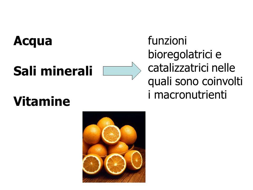 Acqua Sali minerali Vitamine funzioni bioregolatrici e catalizzatrici nelle quali sono coinvolti i macronutrienti