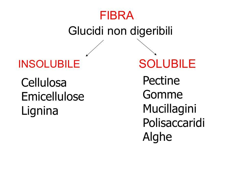 FIBRA INSOLUBILE SOLUBILE Cellulosa Emicellulose Lignina Pectine Gomme Mucillagini Polisaccaridi Alghe Glucidi non digeribili