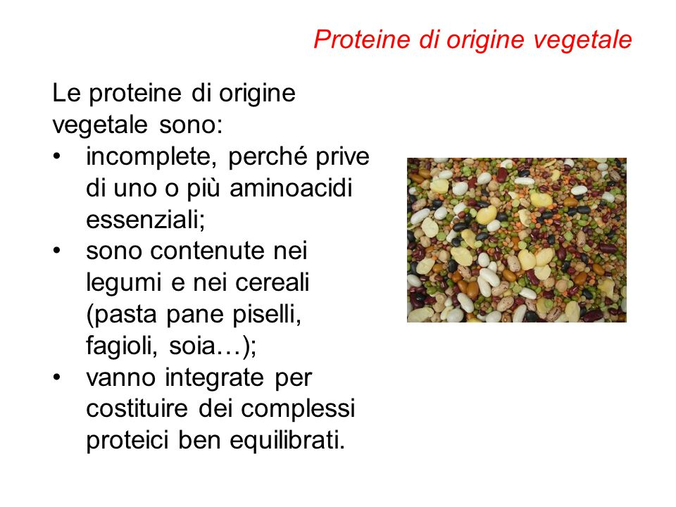 Le proteine di origine vegetale sono: incomplete, perché prive di uno o più aminoacidi essenziali; sono contenute nei legumi e nei cereali (pasta pane