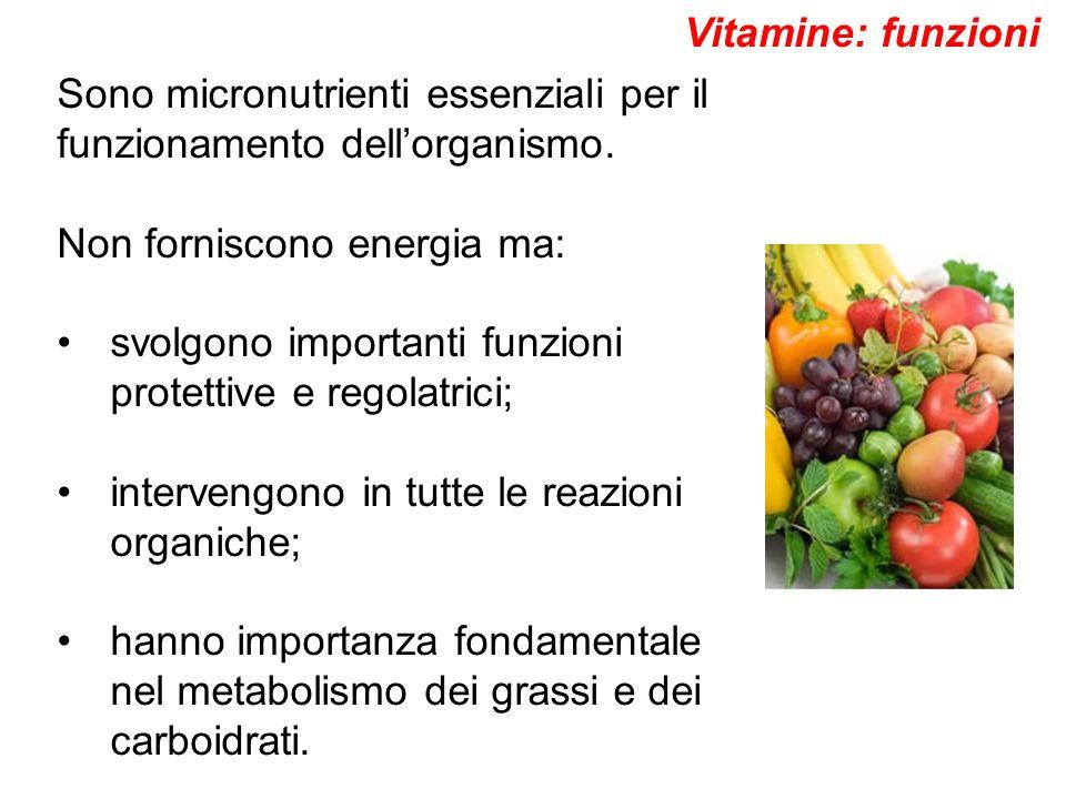 Sono micronutrienti essenziali per il funzionamento dell'organismo. Non forniscono energia ma: svolgono importanti funzioni protettive e regolatrici;