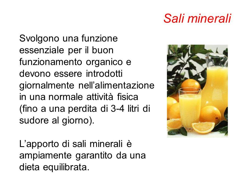 Svolgono una funzione essenziale per il buon funzionamento organico e devono essere introdotti giornalmente nell'alimentazione in una normale attività