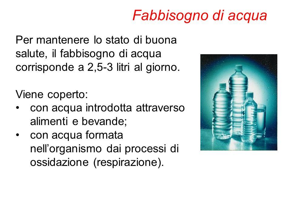Per mantenere lo stato di buona salute, il fabbisogno di acqua corrisponde a 2,5-3 litri al giorno. Viene coperto: con acqua introdotta attraverso ali
