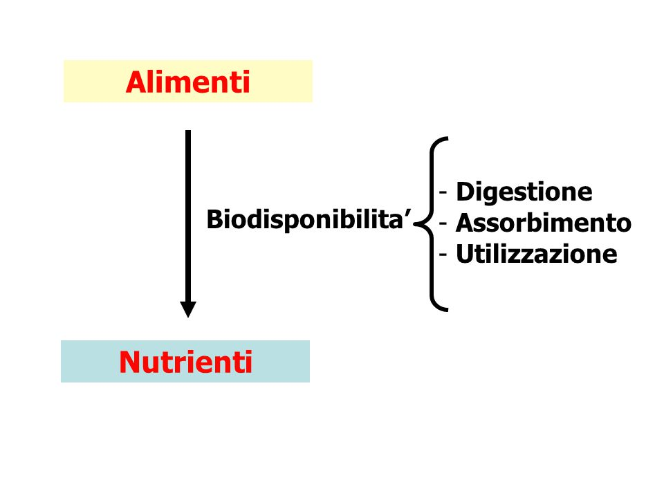 Alimenti Nutrienti Biodisponibilita' - Digestione - Assorbimento - Utilizzazione
