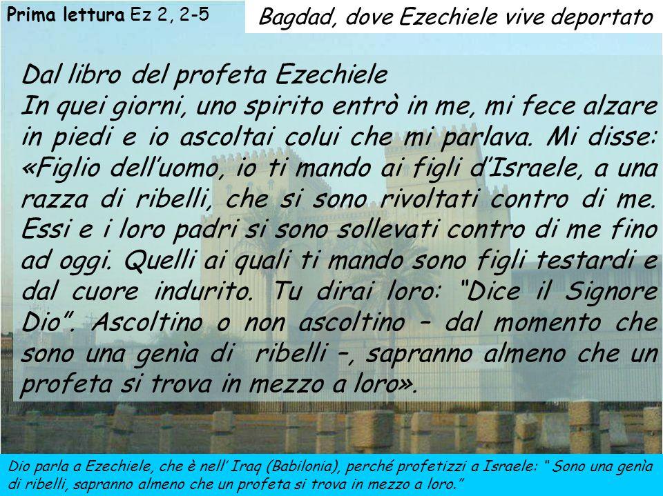 A Nazaret GESÙ, come Ezechiele e come il salmista, è disprezzato 1ª lettura: Il profeta Ezechiele, come Gesù nel vangelo, affronta un popolo ribelle, che non riconosce la voce di Dio Salmo 122: Il salmista, sazio di disprezzo, alza gli occhi a Dio durante il suo pellegrinaggio a Gerusalemme 2ª lettura: Nella seconda lettera ai Corinzi S.