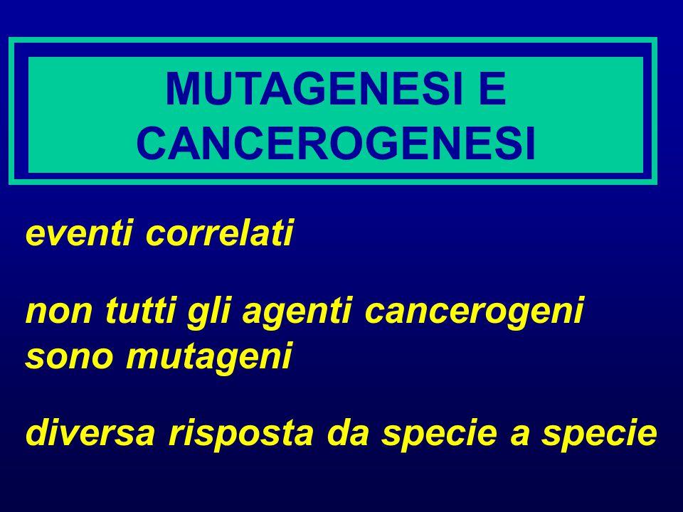 MUTAGENESI E CANCEROGENESI eventi correlati non tutti gli agenti cancerogeni sono mutageni diversa risposta da specie a specie