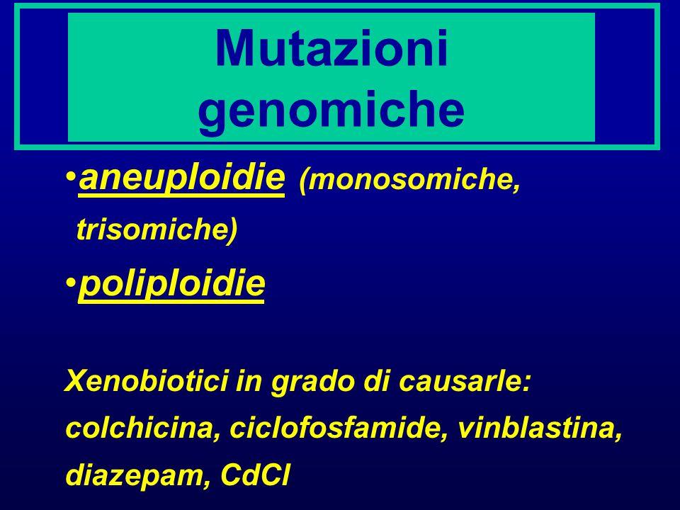 TEST DI MUTAGENESI IN VITRO Salmonella typhimurium (test di Ames) cellule di mammifero (HPRT, tk) IN VIVO Drosophila (SLRL) topi (specific-locus test)