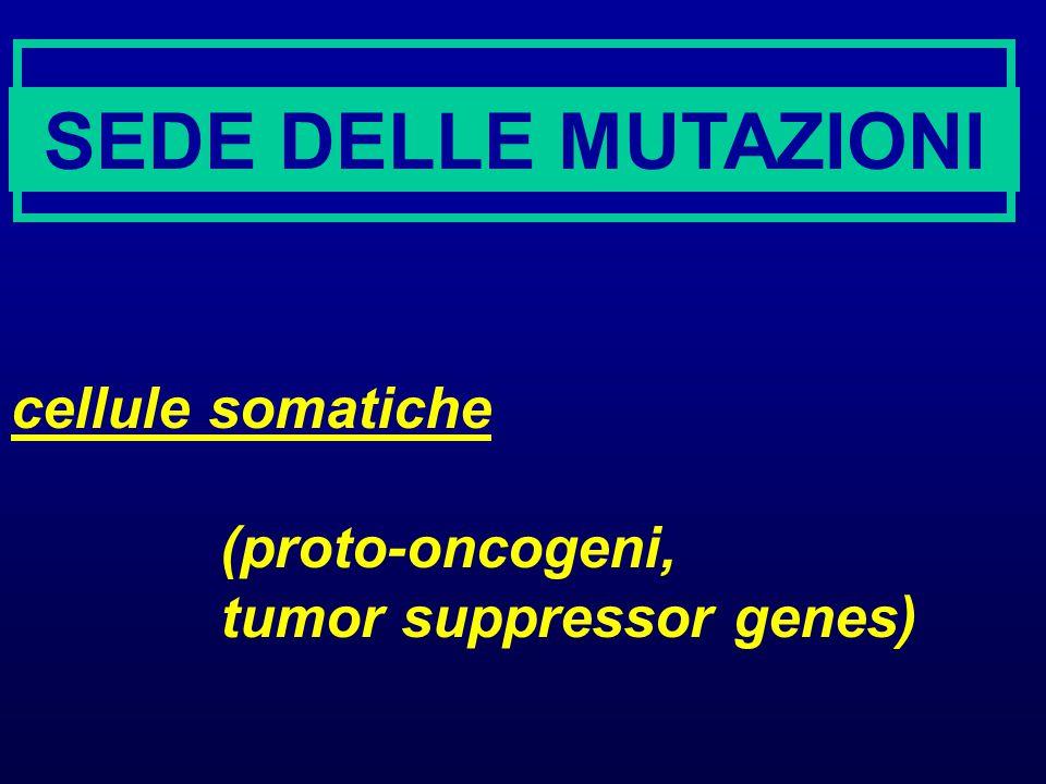 Mutageni Agenti chimici: - analoghi di basi nucleotidiche - che alterano struttura e proprieta' delle basi (alchilazioni, deaminazioni) - intercalanti - che alterano struttura del DNA (legame di grandi molecole elettrofile, rotture di catena, agenti causanti cross-links)