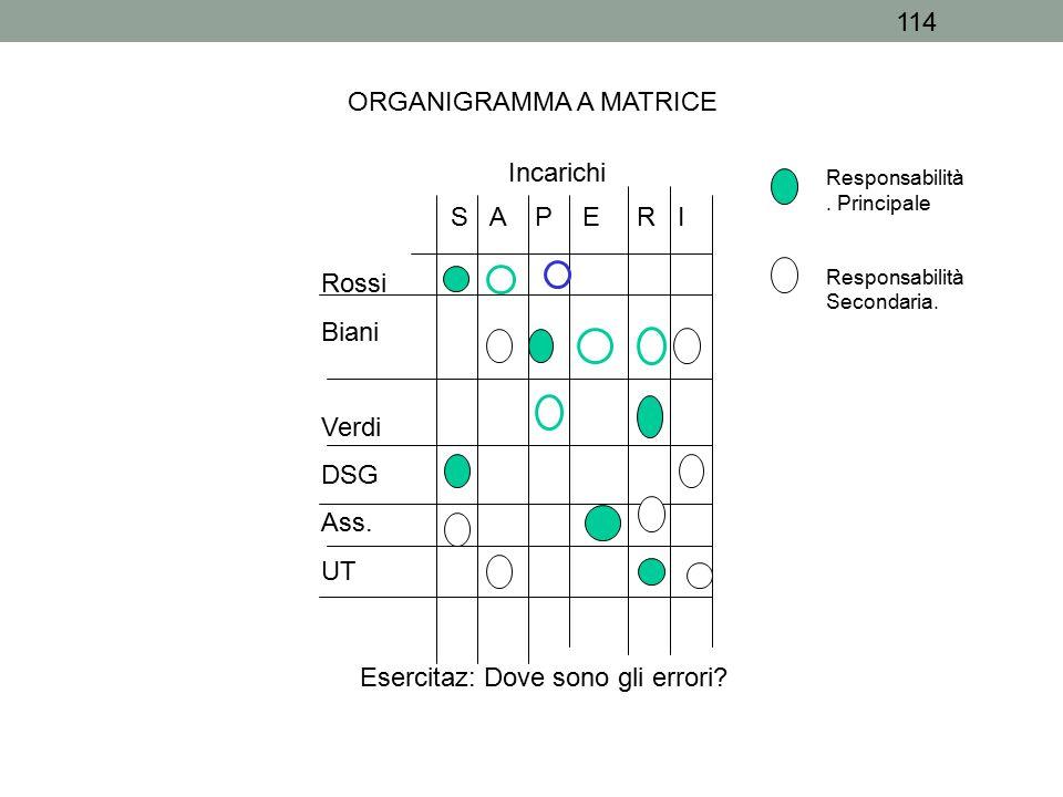 114 ORGANIGRAMMA A MATRICE Rossi Biani Verdi DSG Ass. UT Responsabilità. Principale Responsabilità Secondaria. Incarichi S A P E R I Esercitaz: Dove s