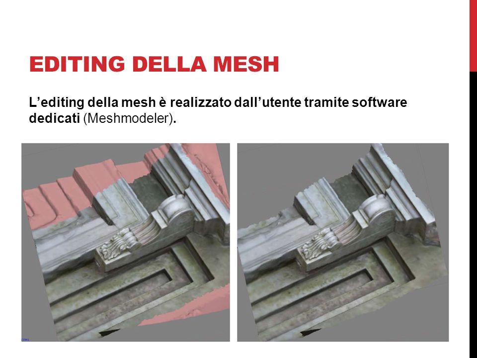 EDITING DELLA MESH L'editing della mesh è realizzato dall'utente tramite software dedicati (Meshmodeler).