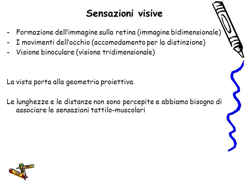 Sensazioni visive -Formazione dell'immagine sulla retina (immagine bidimensionale) -I movimenti dell'occhio (accomodamento per la distinzione) -Vision