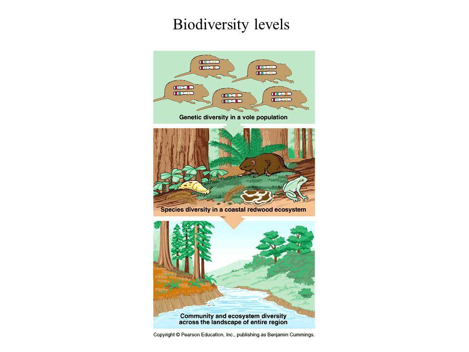 Biodiversity levels